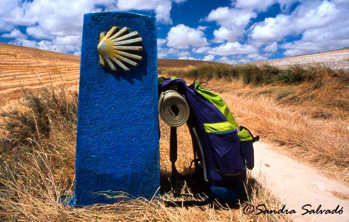 Camino003_1