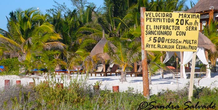 How to get to Holbox from Cancun, Playa del Carmen and other 4 destinations