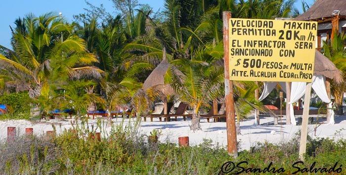 Cómo llegar a Holbox desde Cancún, Playa del Carmen y otros destinos 4