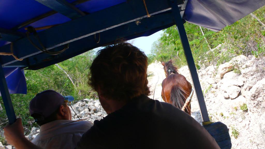 Cenotes Cuzamá, un clásico de los cenotes Yucatán 2